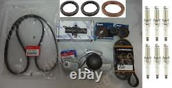 GENUINE WATER PUMP & TIMING BELT SEAL KIT With TENSIONERS for HONDA & ACURA V6